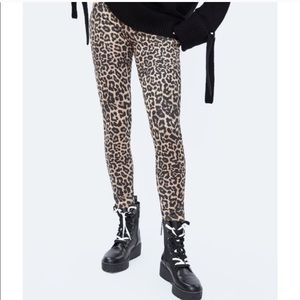Zara Basic Leopard Leggings NWT sz XL